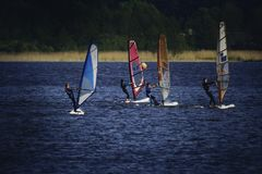 Four Person Riding Wind Sailboard on Body of Water royalty free stock photography