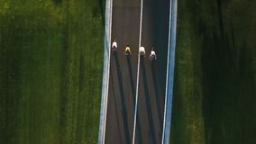 Four persons riding bikes, aerial view. stock footage