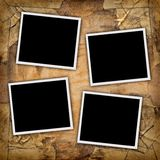 Four photos. Four blank photos on a grungy paper background Stock Photography