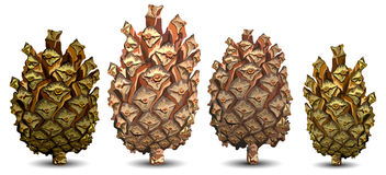 Four pine cone. S isolated on white background, vector illustration Stock Photography