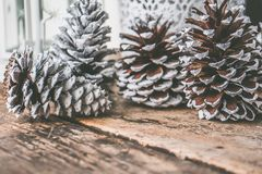 Four Pine Cones on Top of Brown Wooden Surface royalty free stock photos