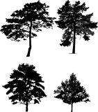 Four pine silhouettes collection Stock Photography