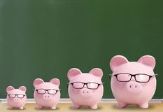 Four pink pigs with glasses. On a green background Royalty Free Stock Images