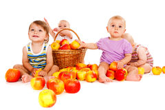 Four playful babies Stock Photography