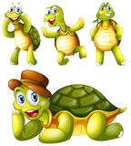 Four playful turtles. Illustration of the four playful turtles on a white background vector illustration