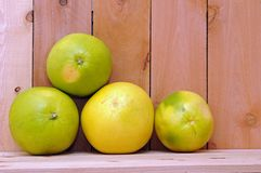Four pomelo Stock Photo