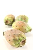 Four Prickly pear Royalty Free Stock Photography