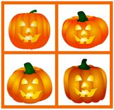 Four pumpkins Stock Image