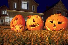 Four pumpkins of Halloween lie on grass Stock Images