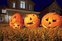 Four pumpkins of Halloween lie on grass Stock Images