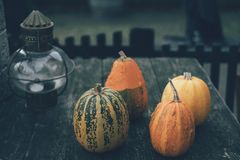 Four pumpkins on the table stock images