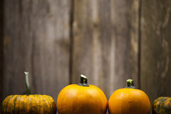 Four Pumpkins. Various sizes of small pumpkins on rustic background Royalty Free Stock Photo