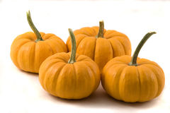 Four Pumpkins on White Royalty Free Stock Photos