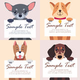 Four Purebred Dogs Holds White Cards for Text Stock Images