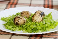 Four quail eggs decorated with greens on the plate. Royalty Free Stock Photography