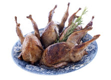 Four quails baked Stock Photography