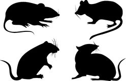 Four rat silhouettes Stock Images