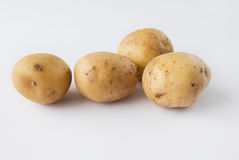 Four Raw Potatoes over white background Royalty Free Stock Photos