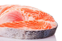 Four raw salmon steaks. Four fresh raw salmon steaks are laying Stock Photography
