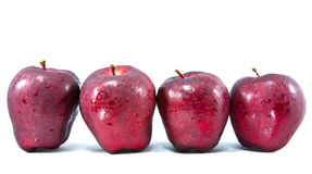 Four red apple Royalty Free Stock Photography