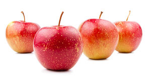 Four Red Apple Isolated Located Royalty Free Stock Photography