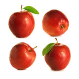 Four red apples. Many beautiful ripe red apples in different camera angles Stock Photo