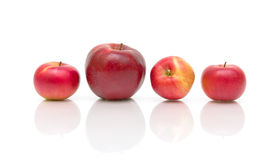 Four red apples on a white background Stock Images