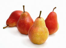 Four red pears. On a white background Royalty Free Stock Images