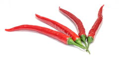 Four Red peppers Royalty Free Stock Photography