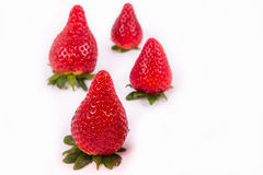 Four red ripe strawberries. With pointed tops on a white background Stock Photos