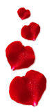 Four Red Valentin `s Day heart. Stock Images