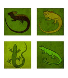 Four reptiles. Illustration of four different kinds of reptiles Vector Illustration