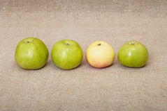 Four ripe apples against drapery Royalty Free Stock Photos