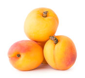 Four ripe apricots Stock Photography