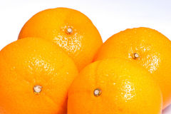 Four ripe oranges Stock Images