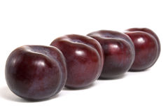 Four ripe plums Royalty Free Stock Image