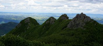Four rocky peaks covered with dwarf pine Royalty Free Stock Image