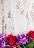 Four roses of different colors for Valentine day Stock Photo