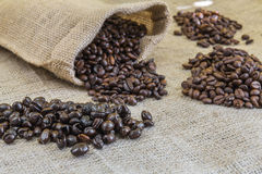Four samples pure Arabica coffee beans of various origins. And different roasting on burlap Stock Photo