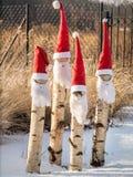 Four santa-claus garden gnomes. Four santa-claus style garden gnomes with red hats and white beards royalty free stock photos