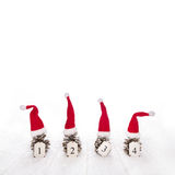 Four santa hats on fir cone with the four numbers for advent on Stock Image