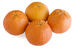Four Scarlet Oranges. Four oranges isolated on a white background stock image