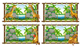 Four scenes of giraffe by the lake Stock Photography