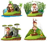 Four scenes with monkey in forest. Illustration Royalty Free Stock Photos