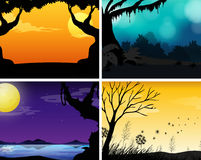 Four scenes of nature with colorful background Royalty Free Stock Image