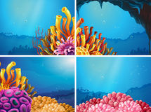 Four scenes under the ocean. Illustration Stock Image