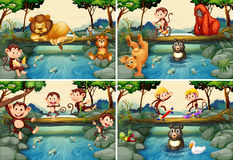 Four scenes with wild animals in the river Royalty Free Stock Image