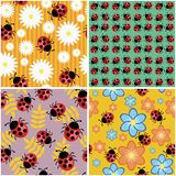Four seamless backgrounds with ladybirds Stock Image