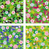 Four seamless floral patterns. Spring or summer blooming garden seamless (easy tilable) floral repeat patterns (prints, backgrounds, wallpapers, swatches) with Royalty Free Stock Photos
