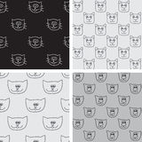 Four seamless pattern with cat faces Royalty Free Stock Photography